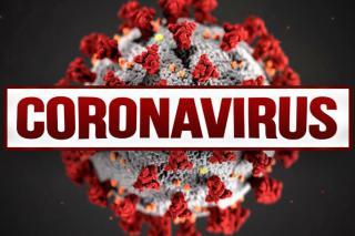 კორონავირუსი თმის გადანერგვა koronavirusi tmis gadanergva